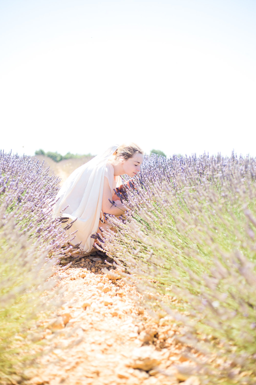 Wedding Photographer, Lavender Fields, Southern France, Matt Erickson Photography, Destination Wedding Photographer, France, Provence