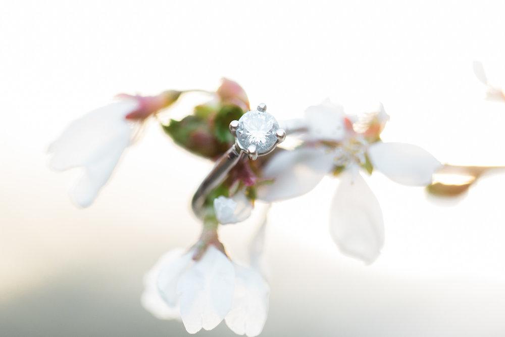 Engagement Details by Cleveland Wedding Photographer Matt Erickson Photography