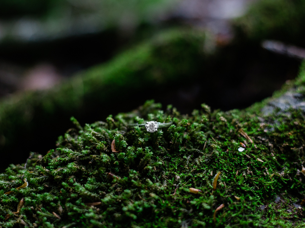 matt-erickson-photography-mohican-state-park-engagement-photos-2.jpg