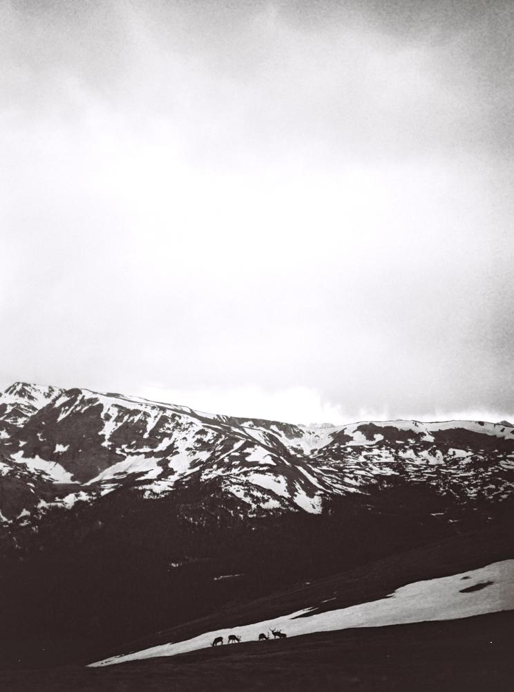 Colorado-travel-lifestyle-photos-by-matt-erickson-photography-100.jpg