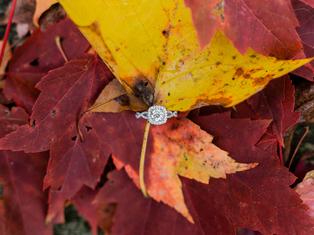 romantic-fall-engagement-photo-ideas-by-matt-erickson-photography-2.jpg