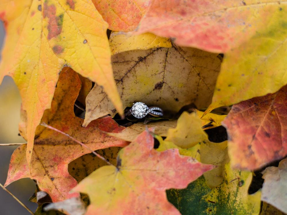 romantic-fall-engagement-photos-by-matt-erickson-photography-17.jpg