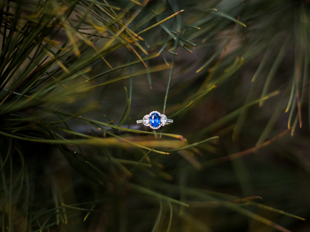 rocky-river-reservation-engagement-photos-29.jpg