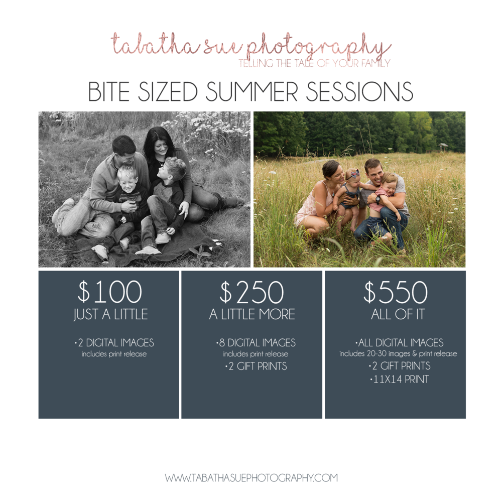 Bite Sized Summer Sessions PNG.png