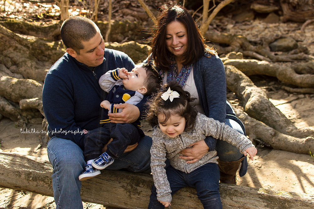 family-photographer-near-cleveland-ohio-lifestyle-type-of-photos-with-a-few-lightly-posed-pictures-laughing-family-sunset-photos-on-a-log.png