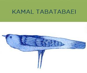 bOAFArtistBlocks_kTABATABAEI.jpg