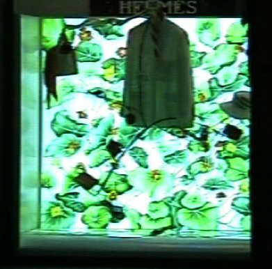 HERMES PLANT.jpg