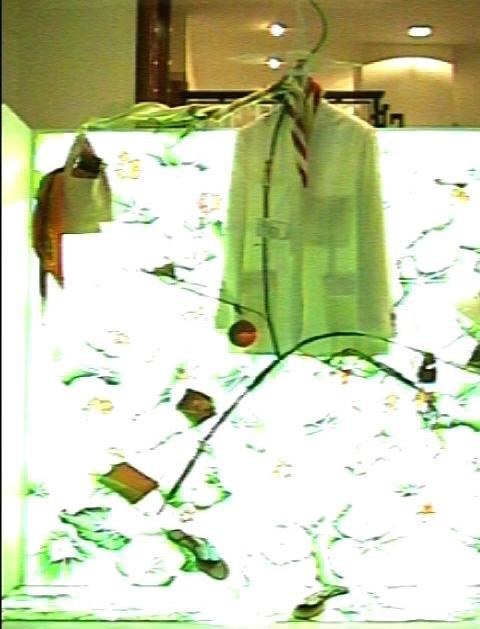 HERMES PLANT2.jpg