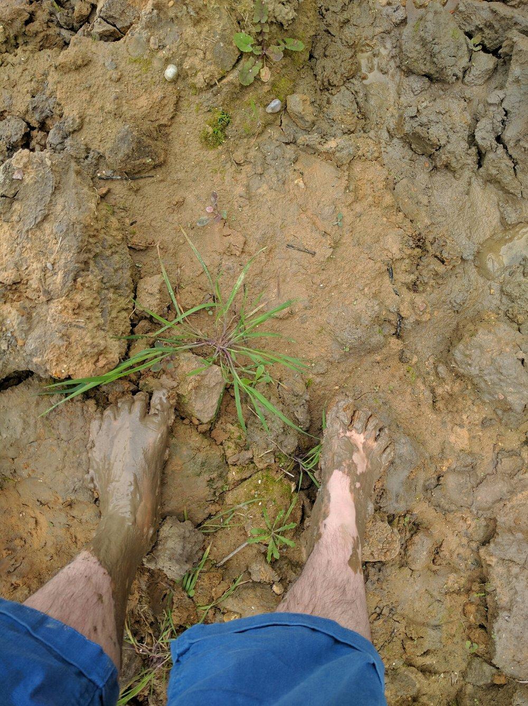 muddy feet or midget hands?