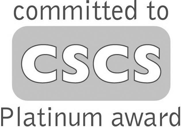 CommittedCSCSplatinumaward_copy.JPG