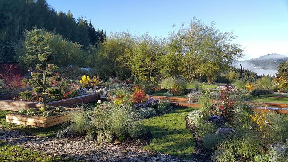 The Wisdom Garden i.jpg