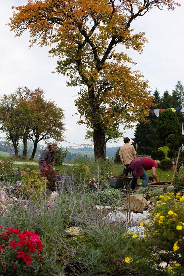 The Wisdom Garden, workers.jpg