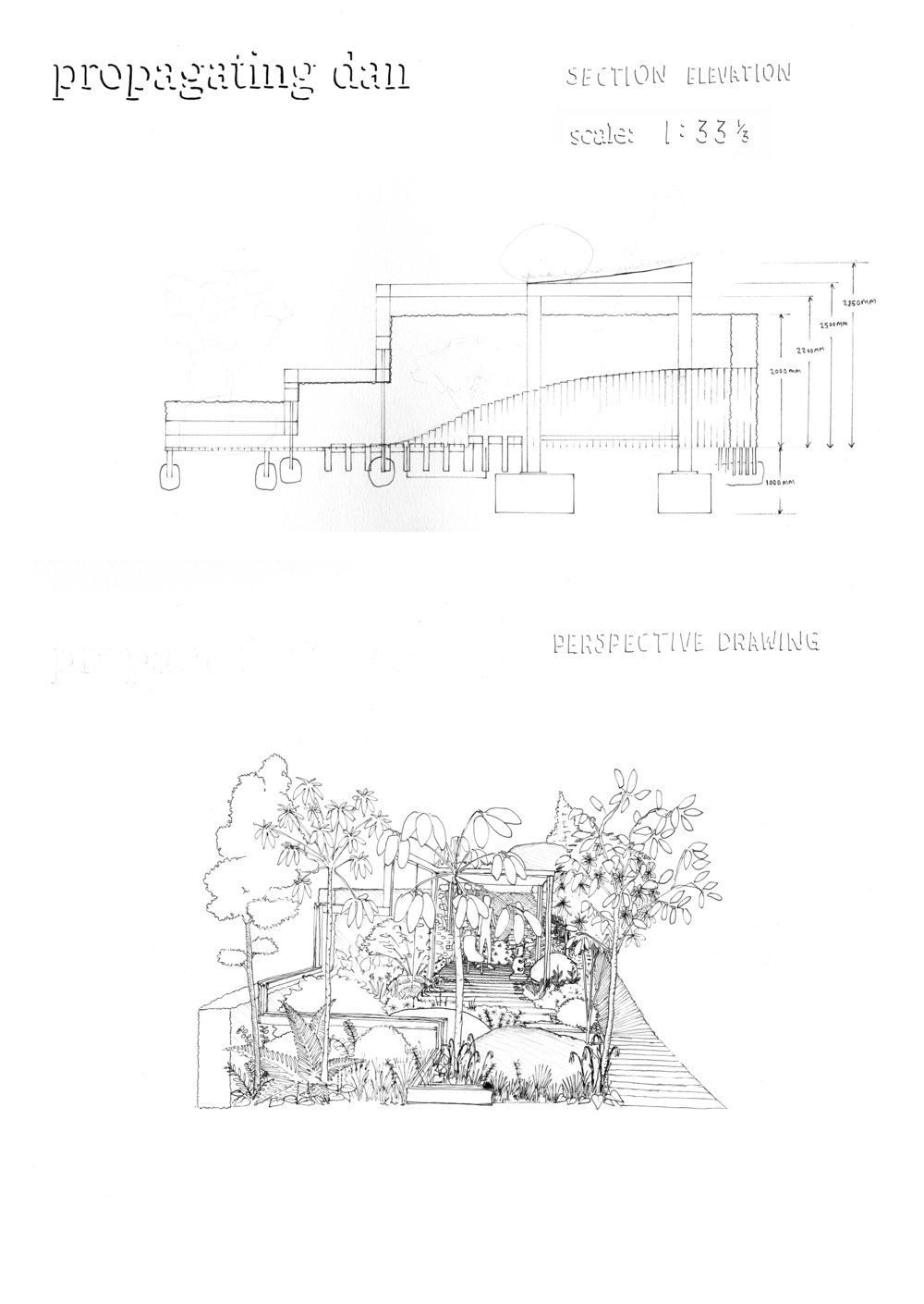 LOW RES Section Elevation & Perspective Drawing.jpg