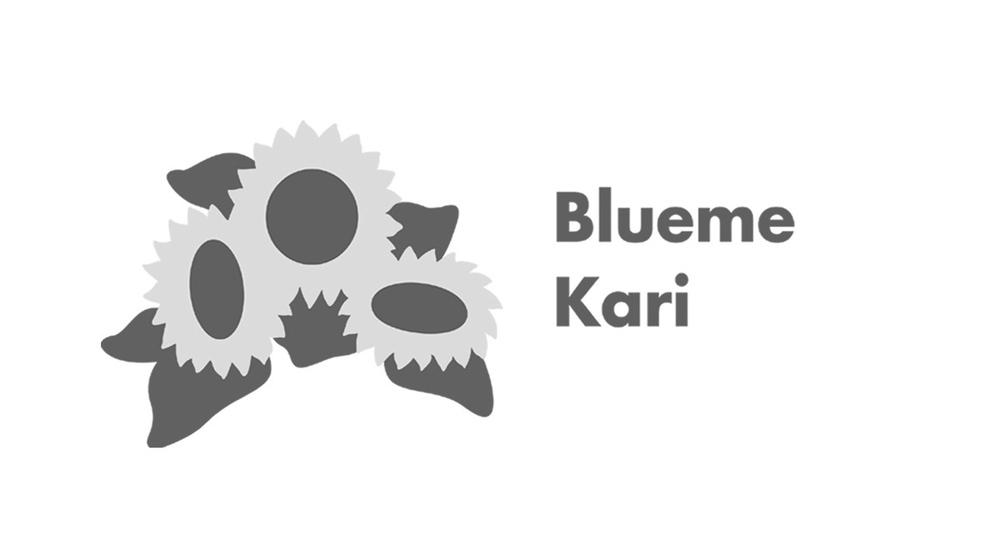 Logo-Blueme-kari-AG.jpg