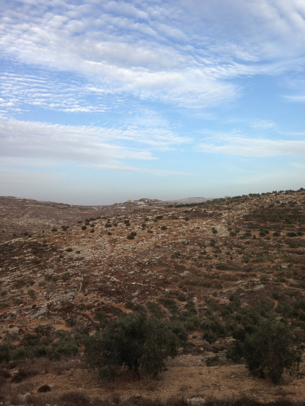 Landbouwgrond Far'ata