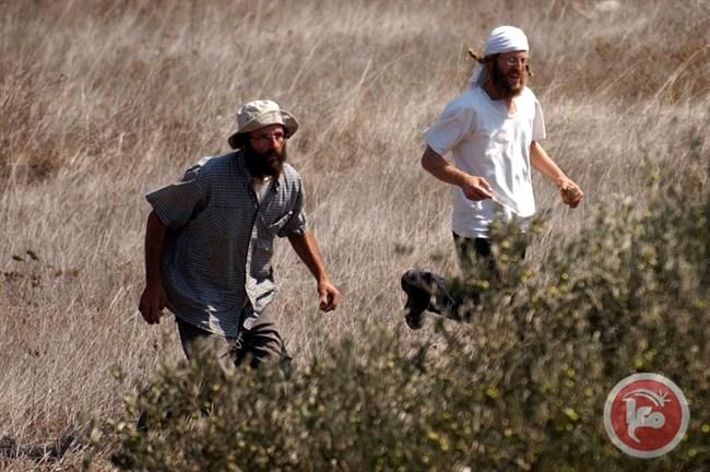settlers farmers.jpg