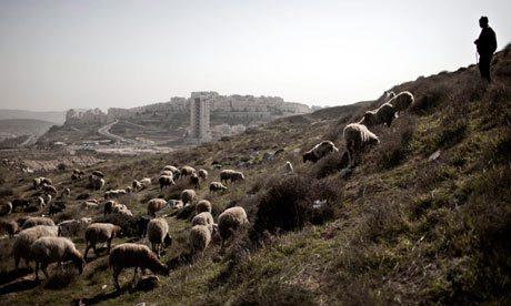 shepherd-ism.jpg
