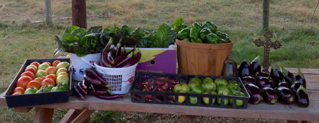 October Harvest at the garden!