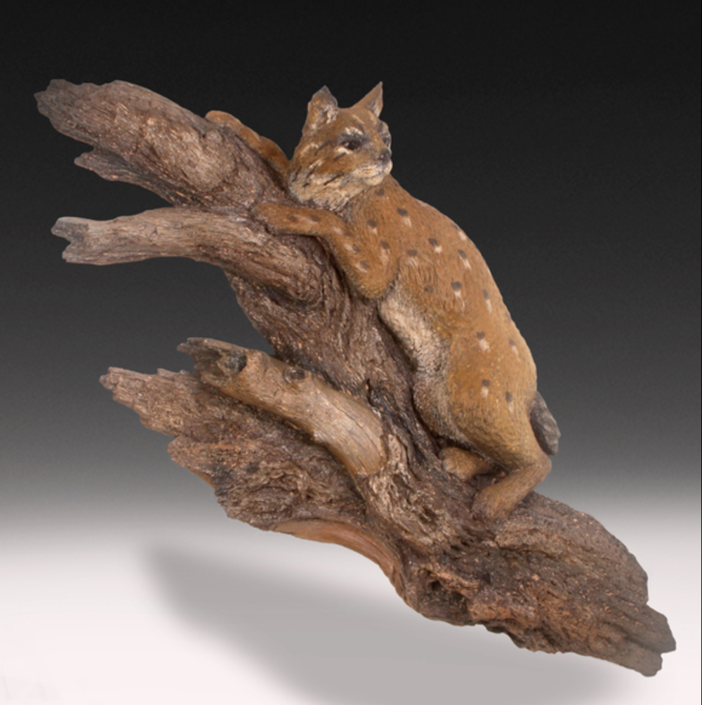Gary Burke - http://garyburkeart.comWildlife of North America is carved in very decayed wood and then cast in both white bronze and pewter or a clay made from mesquite wood. Metal oxides are applied for colored accents.