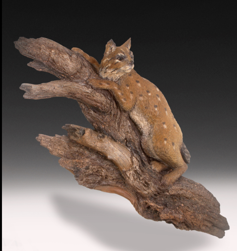 Gary Burke - http://garyburkeart.comWildlife of North America is carved in very decayed wood and then cast in both white bronze and pewter or a clay made from mesquite wood.Metal oxides are applied for colored accents.