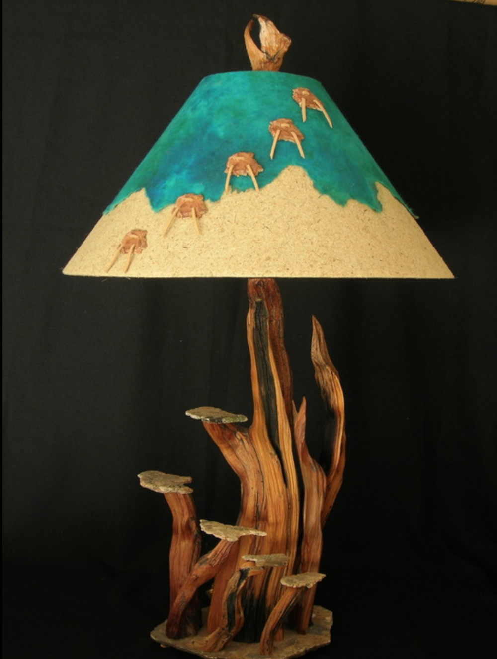 Randall Smith - http://Lampsbyfoxtail.comThe Lamps are made from roots of expired bristlecone pines. Various parts are arranged or intertwined to form the whole piece, then married to a base of unaltered granite Talus