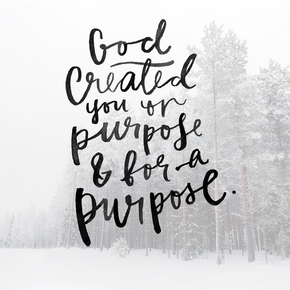 GOD CREATED YOU ON PURPOSE WITH PURPOSE