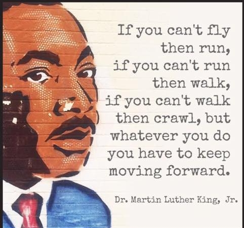 """If you can't fly, then run. If you can't run, then walk. If you can't walk, then crawl. But whatever you do you have to keep moving forward."" MLK"
