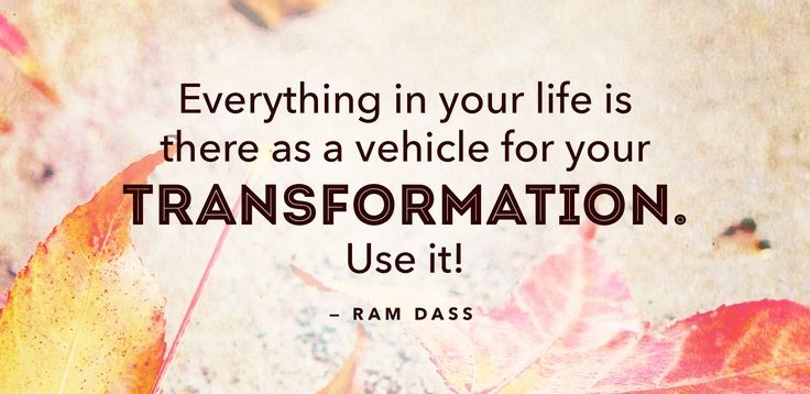 Everything in your life is there as a vehicle for your transformation.