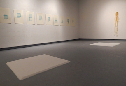 Recollection Lost  (gallery view) , 2015,screen prints, sugar, latex tubing