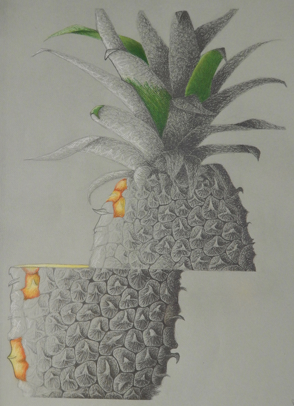 "Assignment:  Ordinary to Extraordinary   Media: graphite and colored pencil  Size: 30"" x 22"""