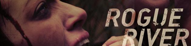 rogue-banner