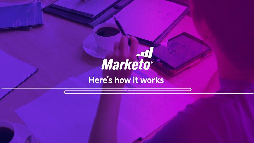 Marketo Style Frames 10.jpeg