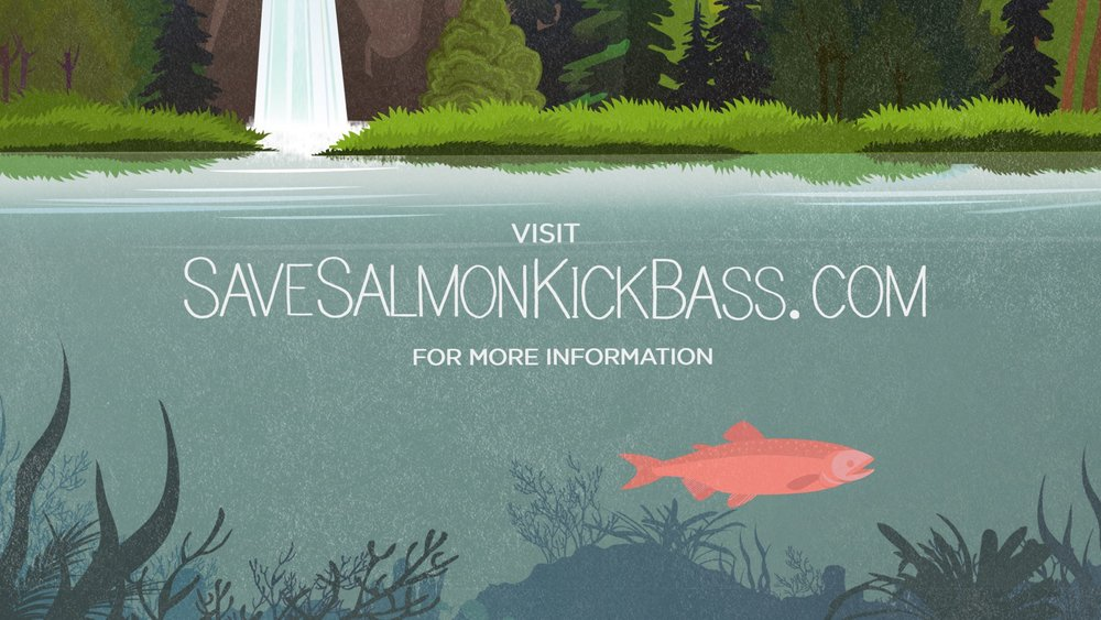 Salmon 8.jpeg