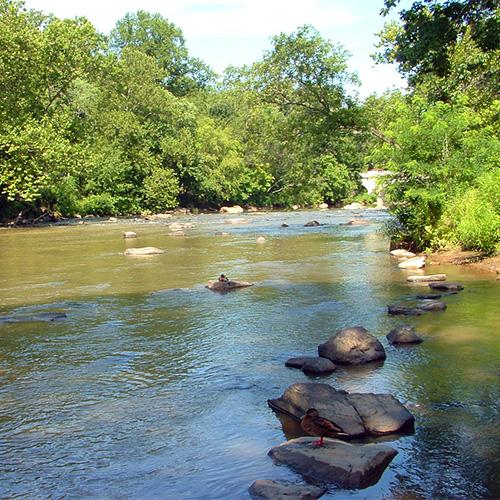 Brandywine-River.jpg