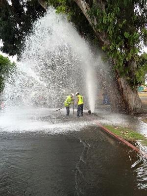 sheared hydrant.jpg