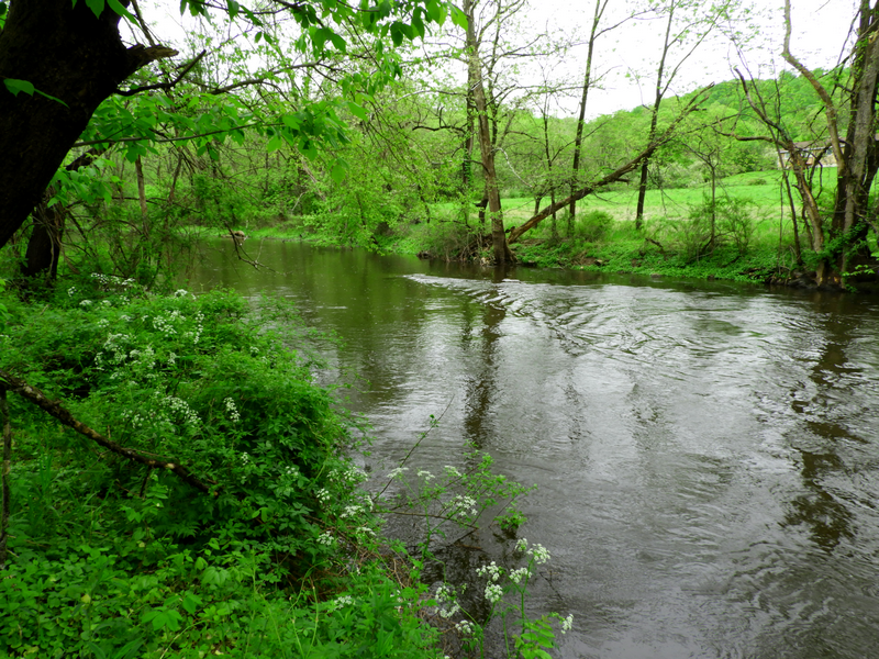 The Musconetcong River in Port Murray, NJ is among the Delaware River tributaries to benefit from the Delaware River Conservation Fund.