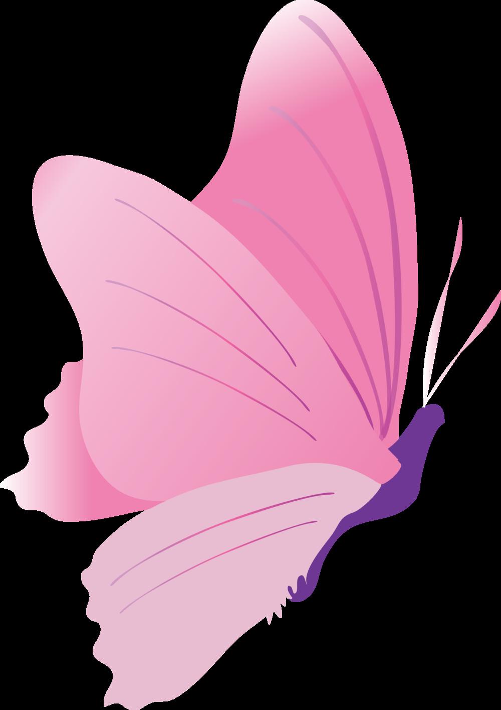 isabella-pink-combination-skin.png