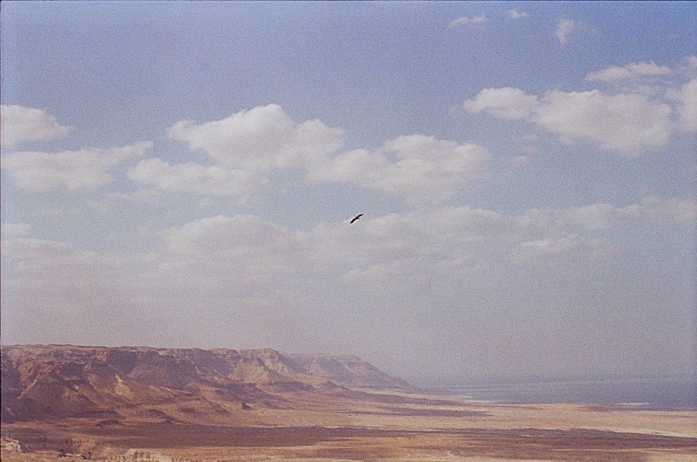View from Masada.jpg