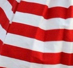 stripes 15.JPG