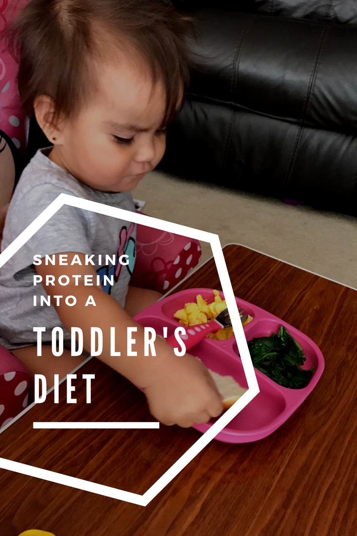 Sneaking Protein into a Toddler's Diet