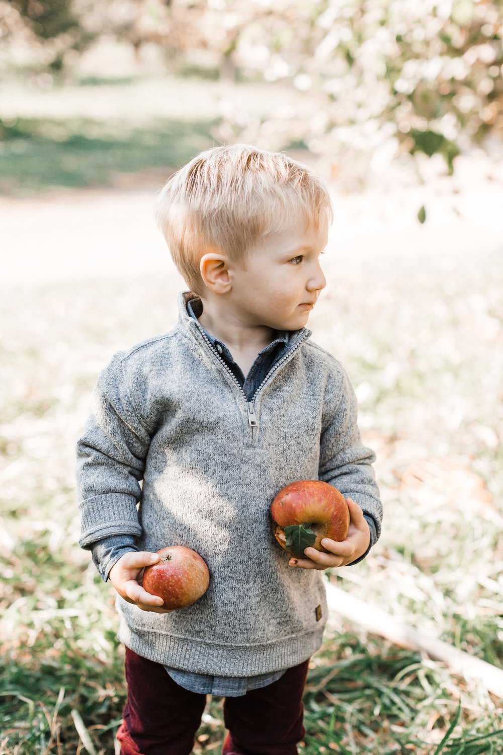 Stribling Orchard Fall Family Photography | Markam, Virginia | A