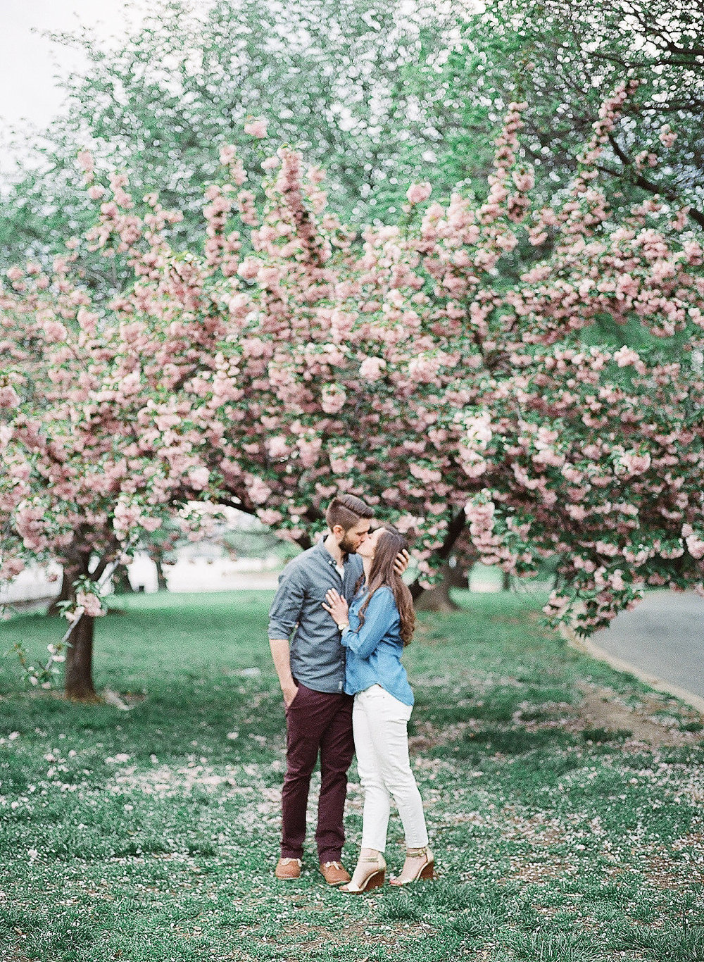 Cherry Blossom Engagement Photography | Andrea Rodway Photography