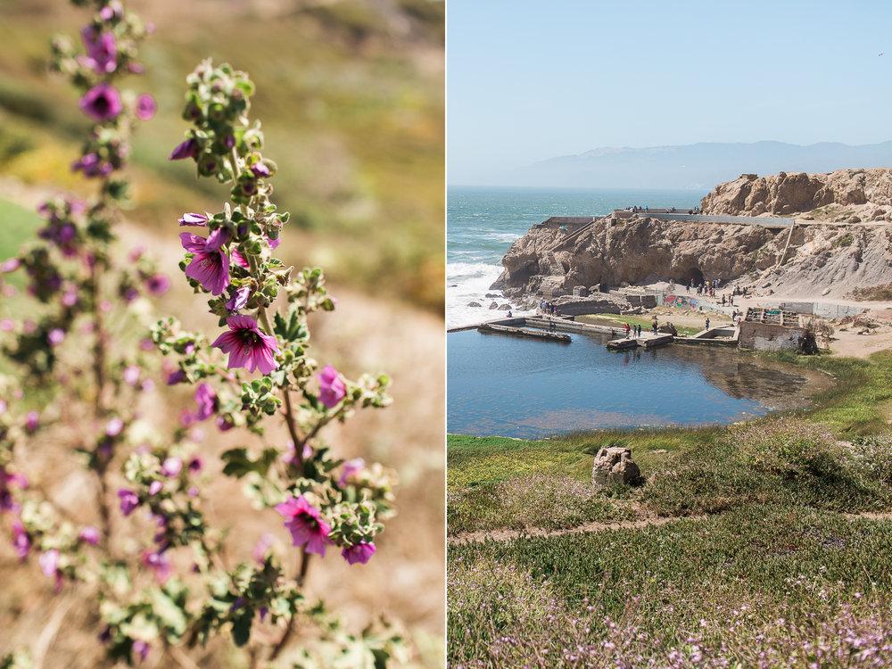 Wanderlust California: San Francisco Land's End
