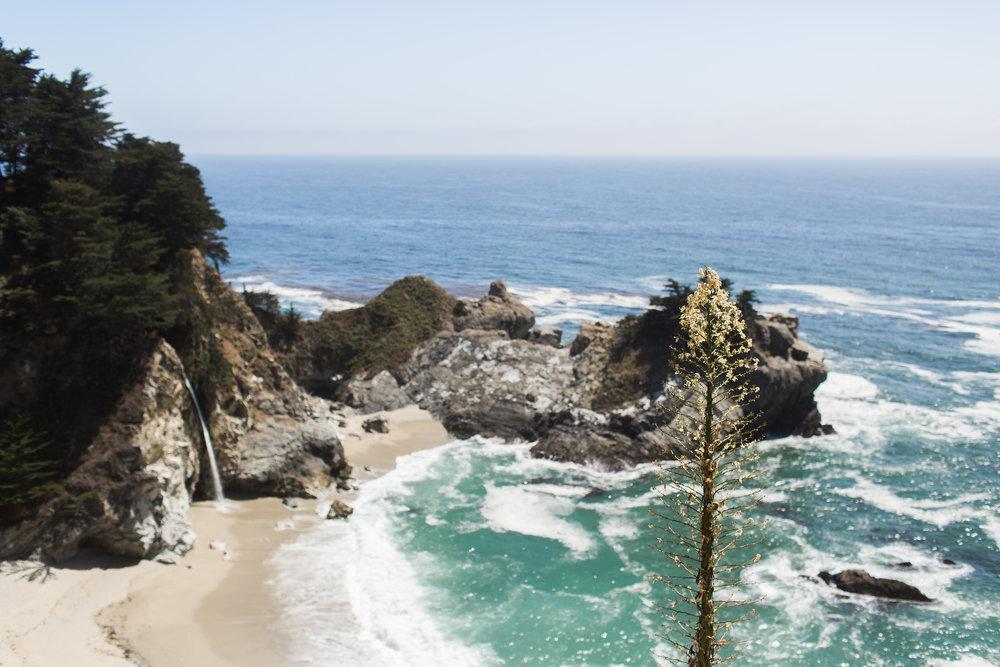 California-117.jpg