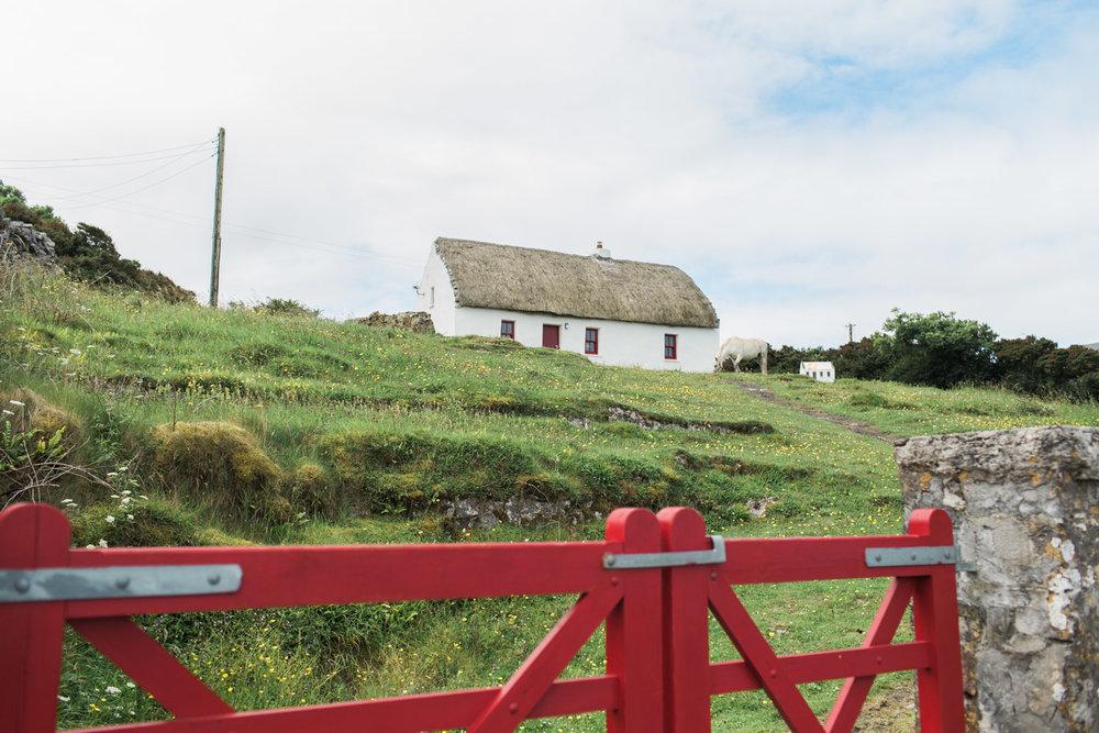 Ireland (54 of 185).jpg