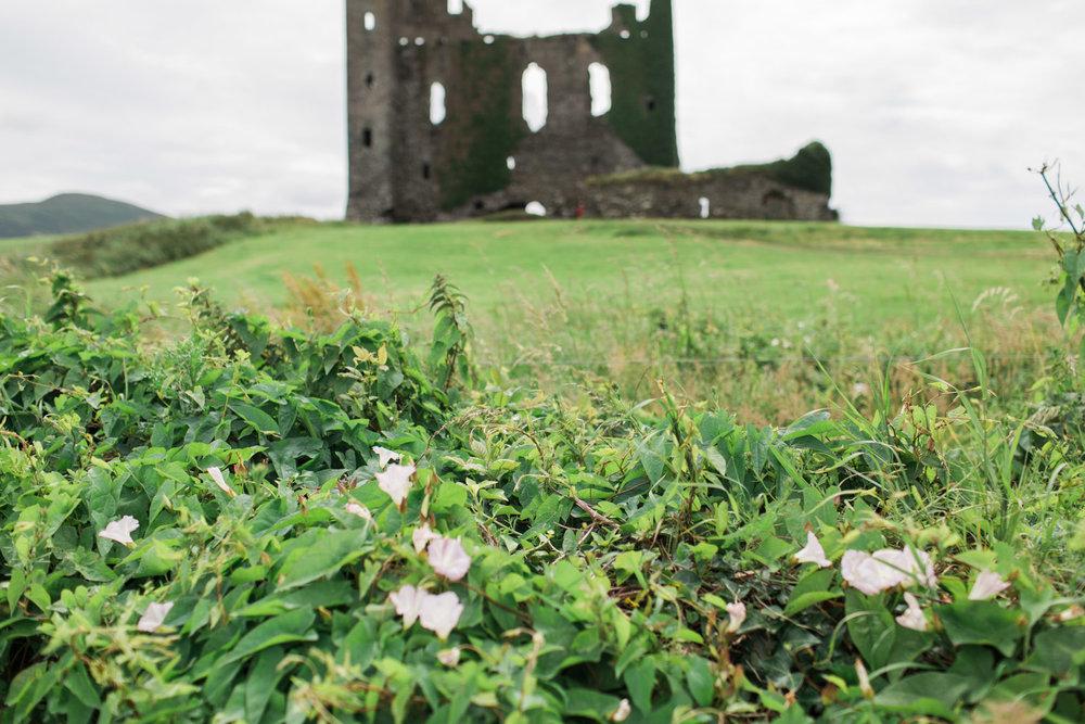 Ireland (99 of 185).jpg