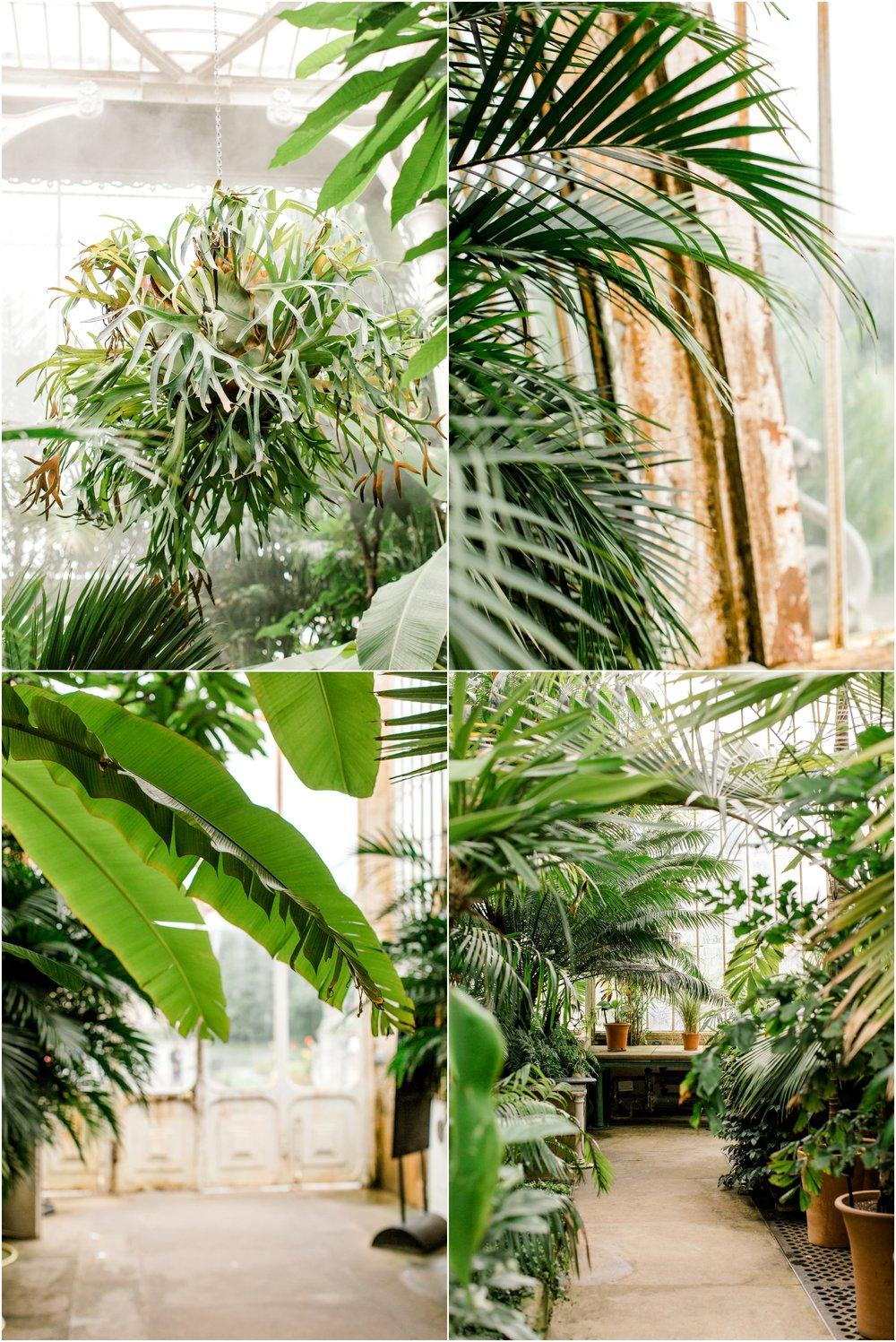 Kew Botanical Gardens London