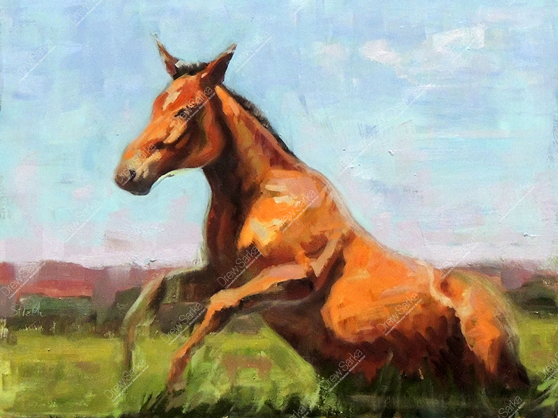 Rising Foal, 9x12