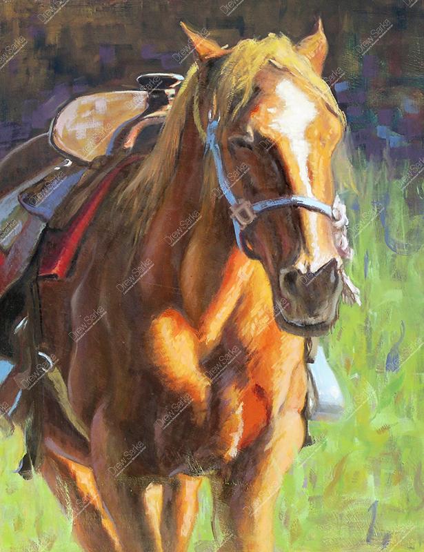 Saddled, 18x24