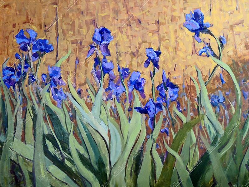 Sunlit Irises, 30x40